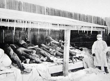 «Отходы» лабораторий - тела умерших после экспериментов.