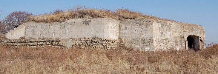 Общий вид артиллерийской позиции.