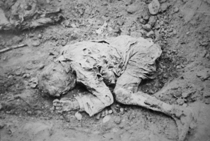 Жертва немецкого расстрела в Майкопе. 1942 г.