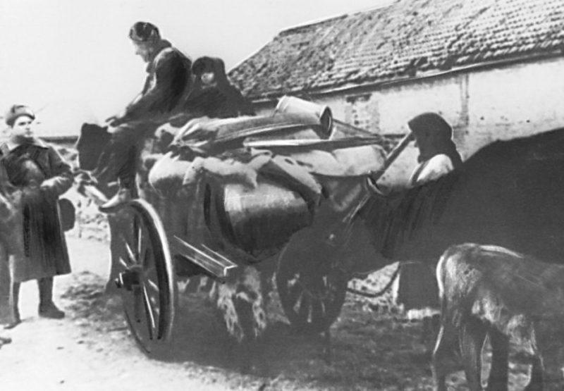 Возвращение беженцев. Январь 1943 г.