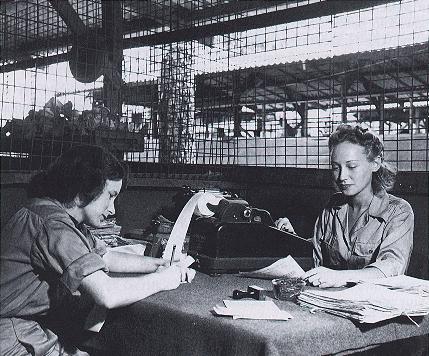 Военнослужащие армейского финансового офиса. 1944 г.