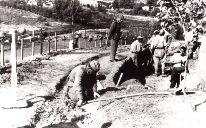 Советские военнопленные работают на перезахоронении на немецком кладбище в Тютковичах. 1942 г.