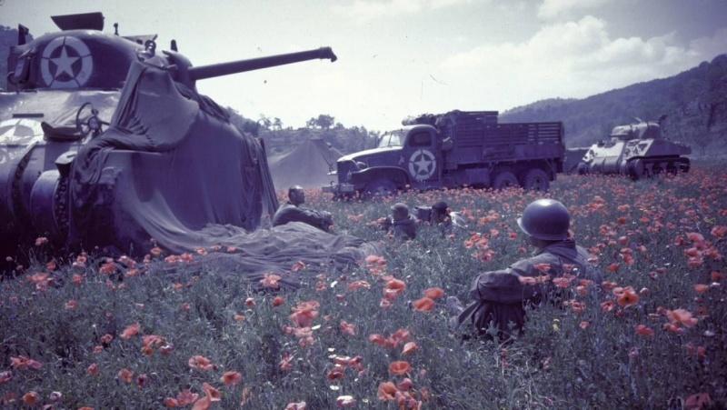 Солдаты «Свободной Франции» отдыхают в маковом поле у танка М4 «Шерман». Август 1944 г.