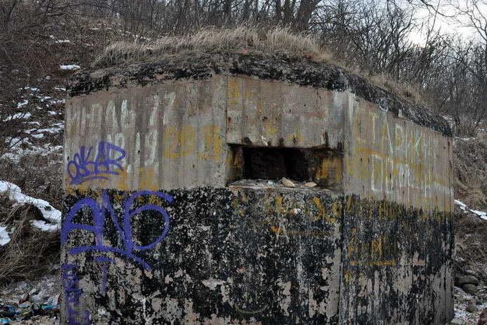 Двухамбразурный ДОТ №202 «Отпорный» на острове Русский был построен в 1940 году. Расположен на полуострове Кондратенко, восточнее м. Васильева. Класс защиты - М-3.