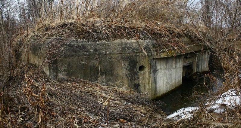 Двухамбразурный ДОТ №230 был построен в 1943 году в районе «Красных казарм». Класс защиты - М-3.
