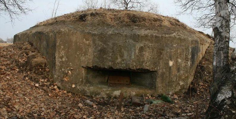 Двухамбразурный ДОТ №231 был построен в 1943 году в районе восточнее «Красных казарм». Класс защиты - М-3.