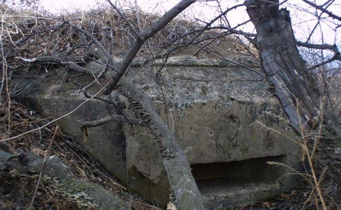 Двухамбразурный ДОТ №251 был построен в 1943 году в поле между аэродромом «Центральная-Угловая» и аэропортом «Владивосток». Класс защиты - М-3.