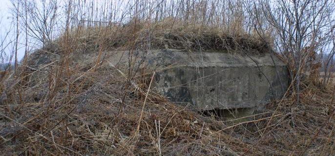 Двухамбразурный ДОТ №256 был построен в 1943 году в поле между аэродромом «Центральная-Угловая» и аэропортом «Владивосток». Класс защиты - М-3.
