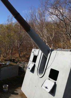 Орудийная позиция Б-24.