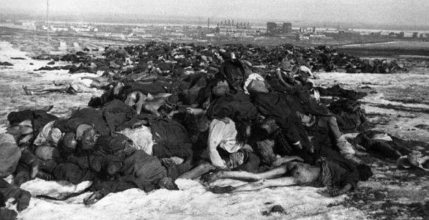 Погибшие немцы в Сталинградском котле. Февраль 1943 г.