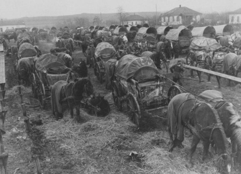 Фургоны немецкого обоза в окружении под Черкассами. Ноябрь 1943 г.