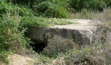 Артиллерийский ДОТ №66 у деревни Терновки для 45-мм орудия 21-К.