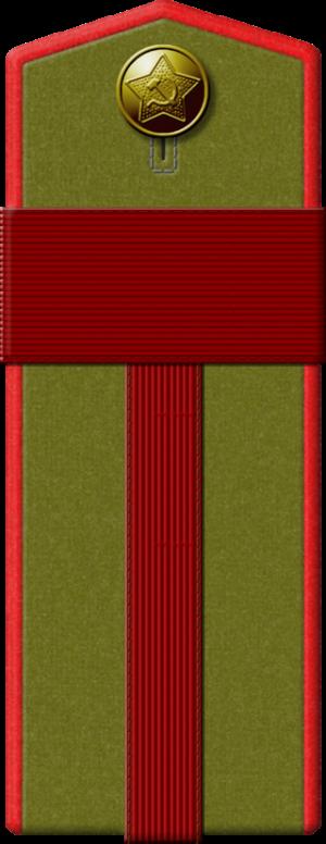 Полевой погон старшины артиллериста.
