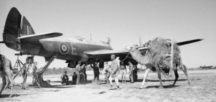 Британские войска в Ливии.