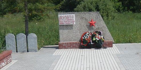 д. Варфоломеево Тульского городского округа. Памятник, установленный на братской могиле, в которой похоронен 61 советский воин, погибший в годы войны. На стеле надпись - «Здесь в декабре 1941 года воины 258 дивизии 50-й армии не дали возможности немецко-фашистским войскам завершить окружение Тулы».