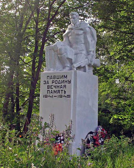 д. Севрюково Тульского городского округа. Памятник, установленный на братской могиле, в которой похоронены советские воины, погибшие в годы войны.