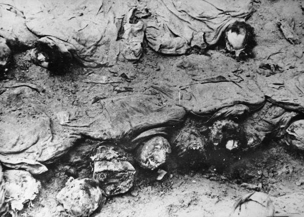 Эксгумация катынской могилы.