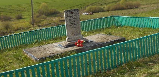 д. Борисовка Тепло-Огаревского р-на. Памятник воинам, погибшим в годы войны.