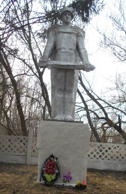 д. Васильчиково Тепло-Огаревского р-на. Памятник воинам, погибшим в годы войны.
