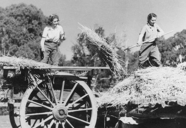 Женщины из AWLA за работой. 1943 г.