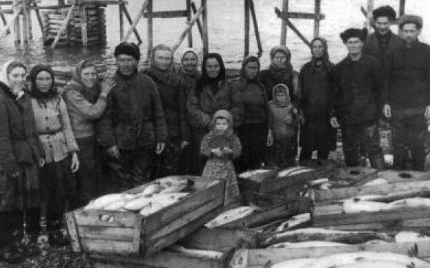 Улов артели для фронта. 1941 г.