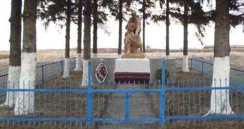 д. Раевка Тепло-Огаревского р-на. Памятник, установленный на братской могиле, в которой похоронены советские воины, павшие в годы войны.