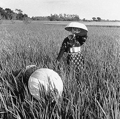 Женщины на полевых работах. 1941 г.