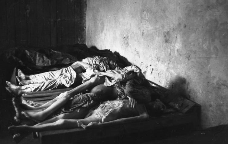 Дети, умершие с голода. Май 1941 г.