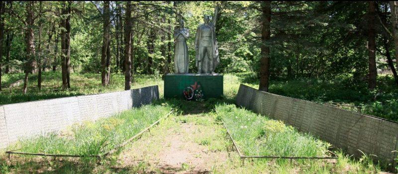 д. Стрикино Арсеньевского р-на. Памятник, установленный на братской могиле, в которой похоронены советские воины, погибшие в годы войны.