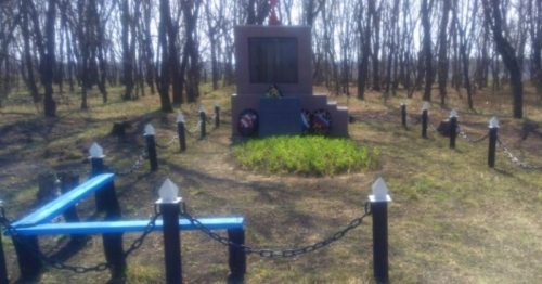 д. Пушкари Ефремовского городского округа. Памятник, погибшим односельчанам.