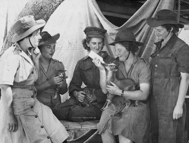 Лагерь AWAS. Квинсленд 1944 г.