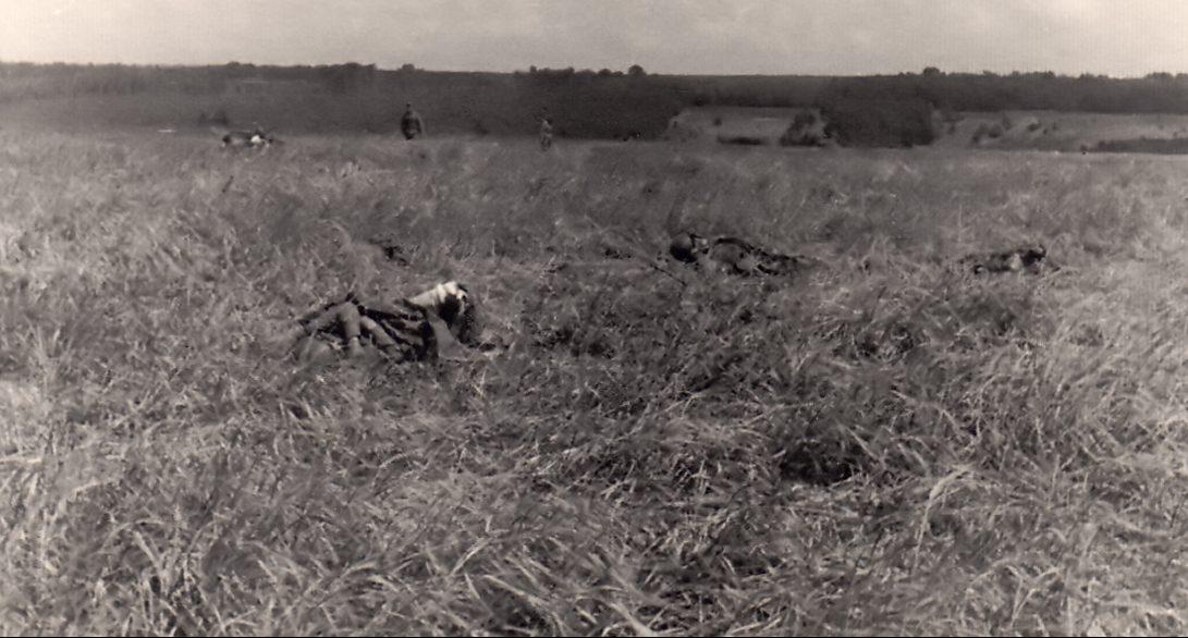 Убитые красноармейцы на поле боя. 8 сентября 1941 г.