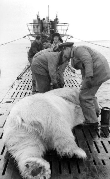 Охота в Северном море.