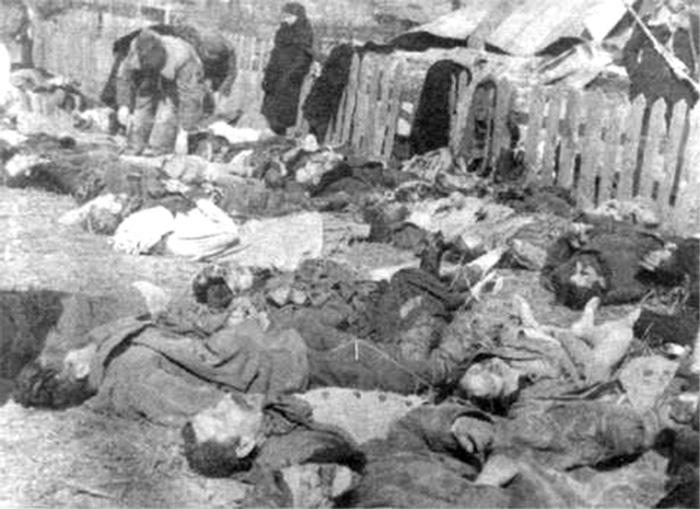 Луцкое воеводство. Свезённые на идентификацию и похороны трупы поляков - жертв резни. 26 марта 1943 г.