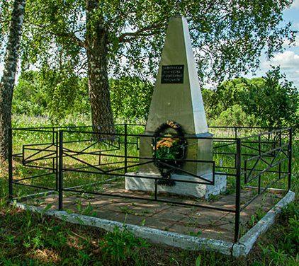 Краснинский р-н. Могила неизвестного солдата на Краснинском шоссе.