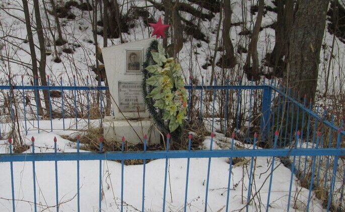 д. Фошня Демидовского р-на. Братская могила двух советских летчиков, погибших в 1942 году в боях с оккупантами.