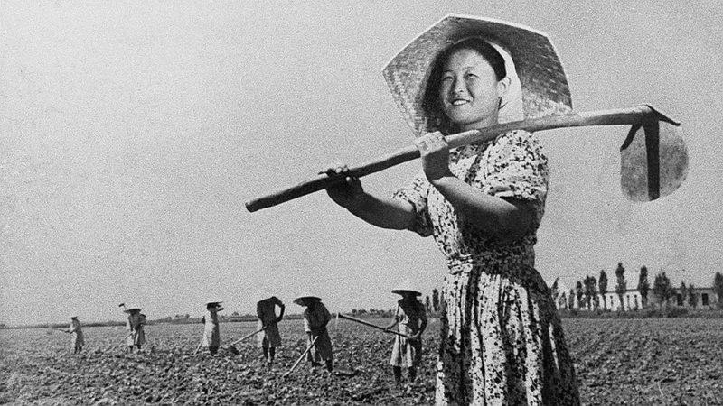 Корейцы на рисовых полях Казахстана.