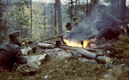 Финские и немецкие солдаты в лесу на привале. 1941 г.