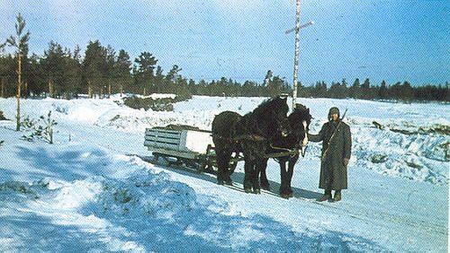 Транспортировка гроба с фронта. 1941 г.