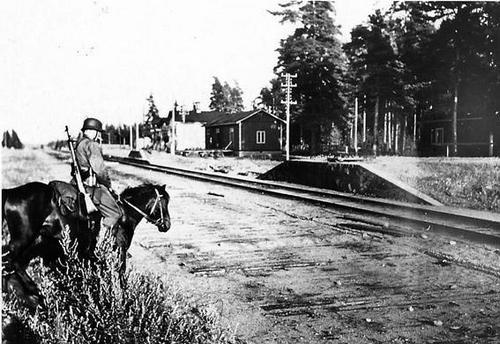 Финский кавалерист. 1941 г.