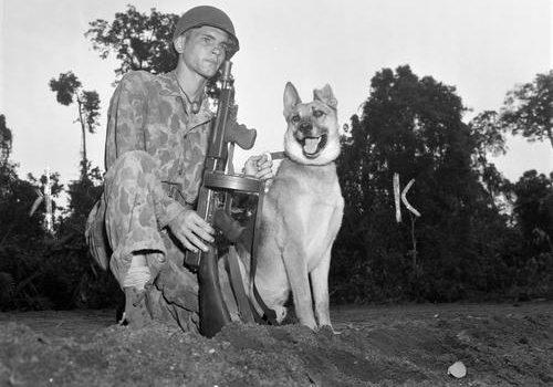 Вожатый морской пехотинец и его военный пес Джек. Бугенвиль, 8 декабря 1943 г.
