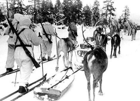 Финский лыжный патруль с оленями в районе Янискоски. 20 февраля 1940 г.