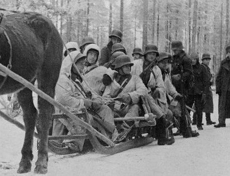 Конные сани во время Зимней войны. 10 января 1940 г.