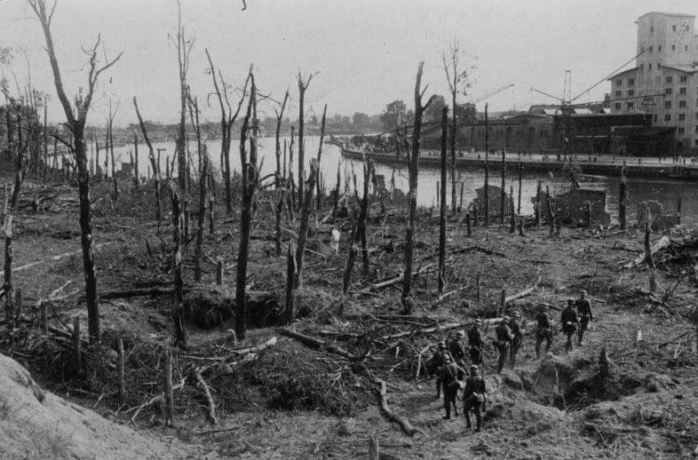 Зачистка немецкими войсками остатков леса после капитуляции гарнизона Вестерплатте. 10 сентября 1939 г.