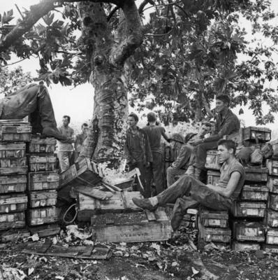 Захваченные трофеи на Сайпане. Июль 1944 г.