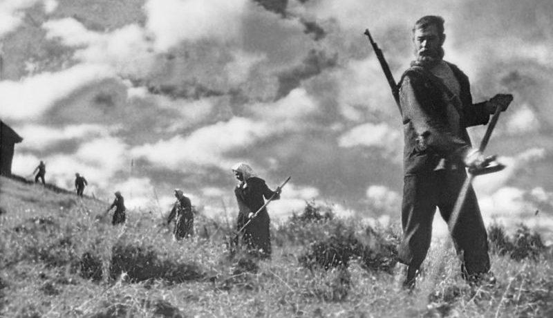 Партизаны на сенокосе. 1942 г.