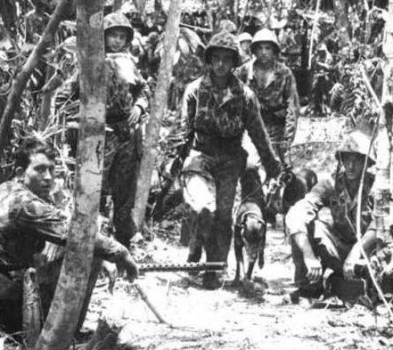 Прочесывание джунглей с собаками. Июль 1944 г.