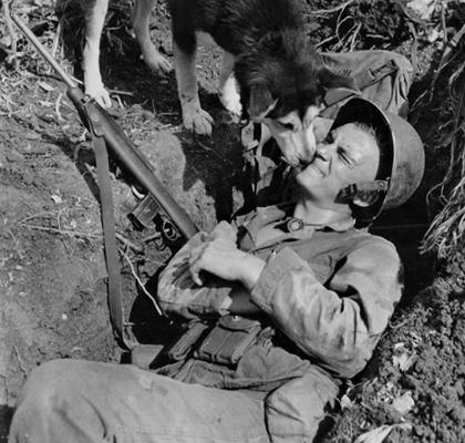 Собаковод морской пехоты США в окопе. Остров Сайпан, Марианские острова, 1944 г.