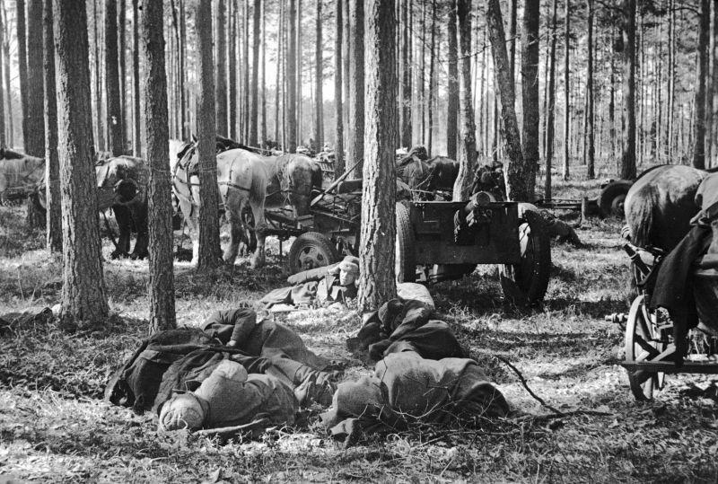 Партизаны соединения Сидора Ковпака отдыхают в лесу в Киевской области. 1943 г.