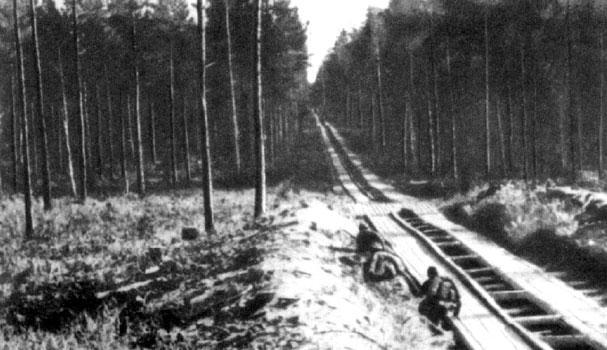 Колейный участок Фронтовой военно-автомобильной дороги Волховского фронта, через лесисто-болотистую местность, у Ладожского озера. 1942 г.